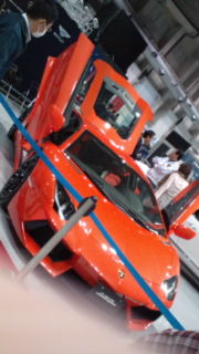 F1010216.jpg
