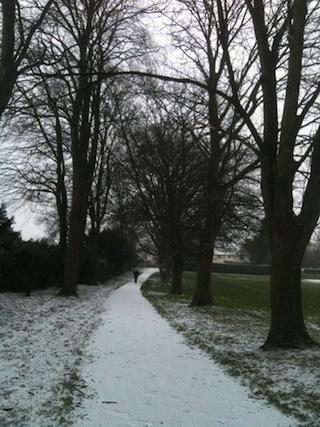 雪 公園内