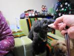 20121224クリスマスイヴ (28)-1