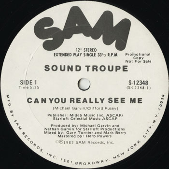 DG_SOUND TROUPE_CAN YOU REALLY SEE ME_201302