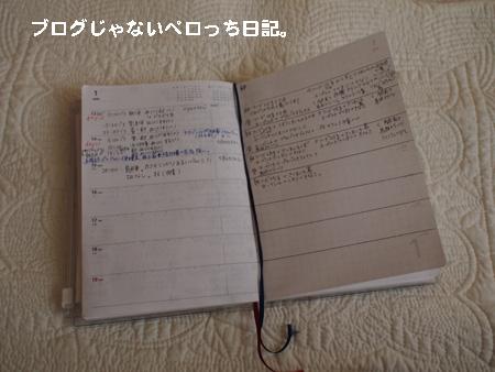 P1161163.jpg