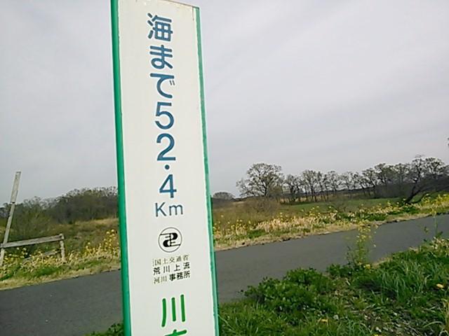 NCM_0140.jpg