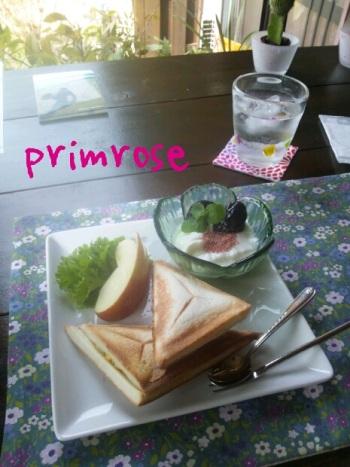 プリムローズ2