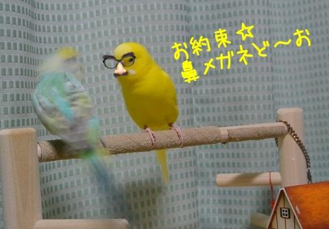 ぎょえ-1
