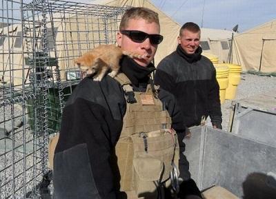 kittens_found_by_us_marines_in_afghanistan_04.jpg