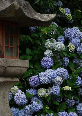 神宮寺 2