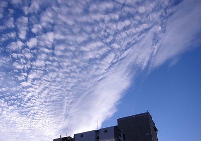うろこ雲 2