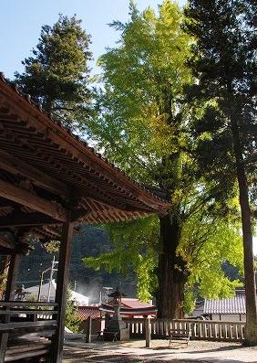 長尾神社7
