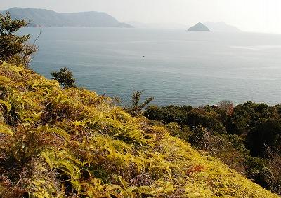 宮島・冒険 12