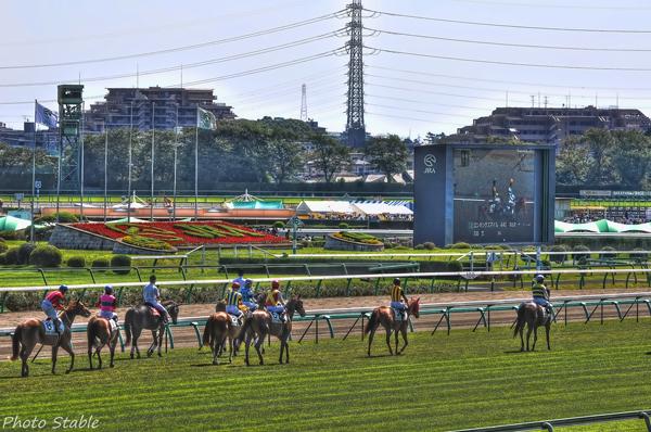 NAKAYAMA RACE COURSE