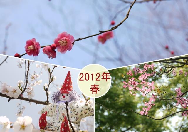 春の樹~花