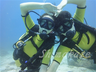 ラチャヤイ島体験ダイビング