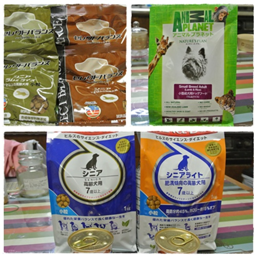 cats12_20120512184733.jpg