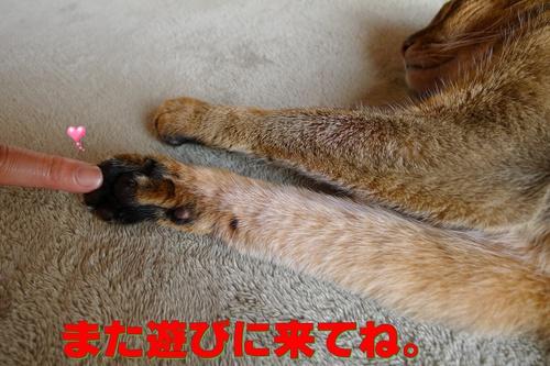 トモダチダヨ・・・(E.T.)って古いか