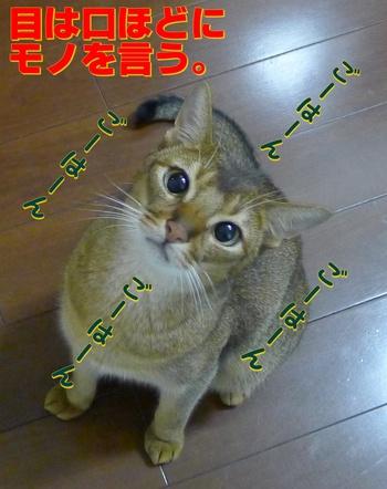 目ヂカラ、すげー!