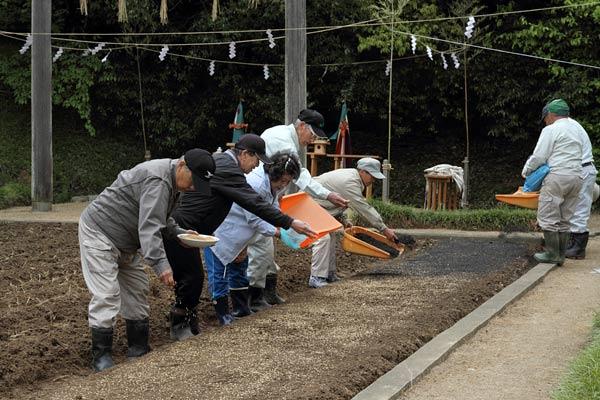 大神神社 播種祭5