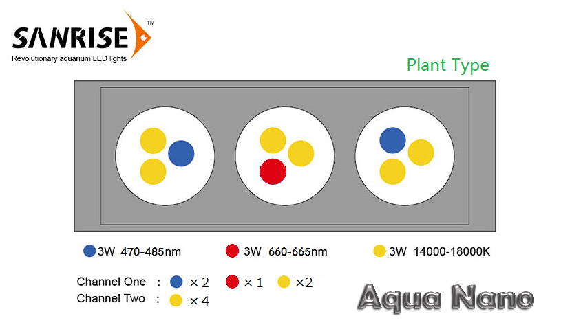 aquanano-Plant1.png