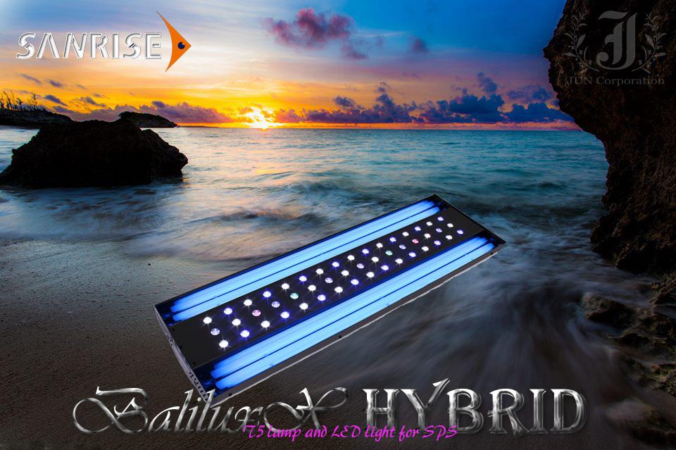 hybrid2.png