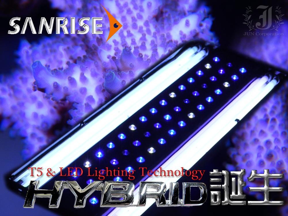 hybrid_003.png