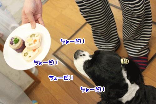 ぱーちー1の1