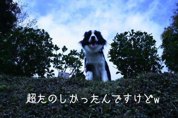 IMG_7014_.jpg