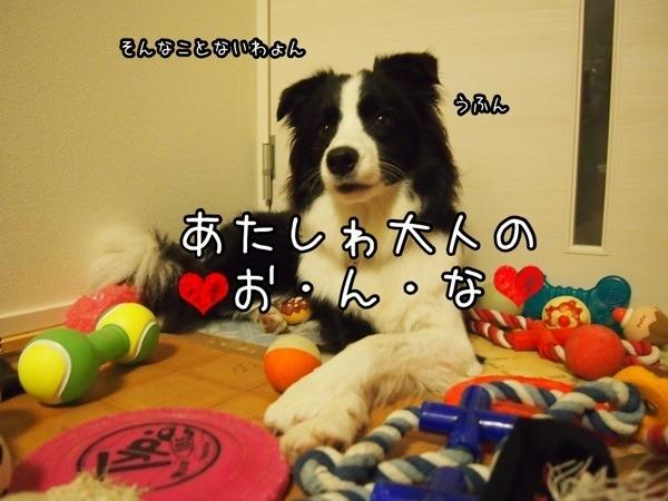 fc2blog_20121016205710397.jpg