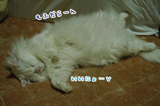 03_20130320151522.jpg