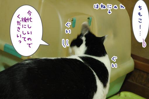 04_20130119181253.jpg
