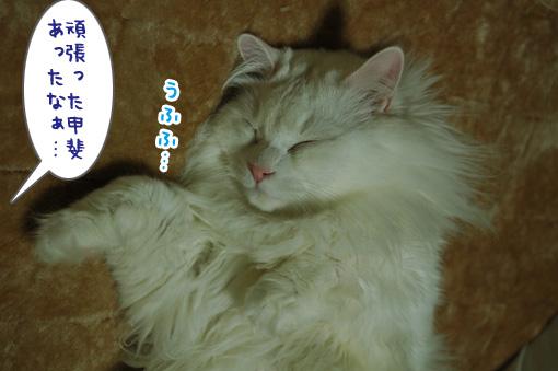 04_20130320151522.jpg