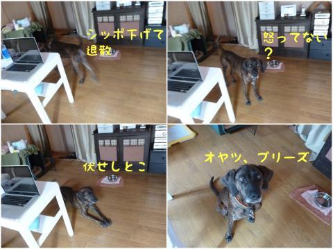 反省_convert_20120726225506