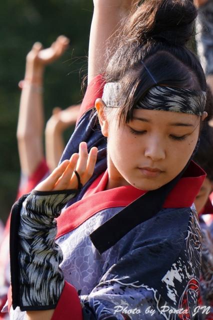 yosakoi14A- (16)