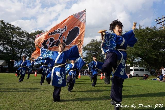 yosakoi14A- (3)