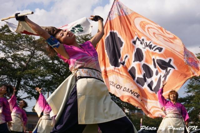 yosakoi14A- (6)
