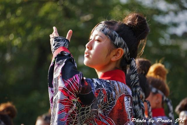 yosakoi14A- (15)