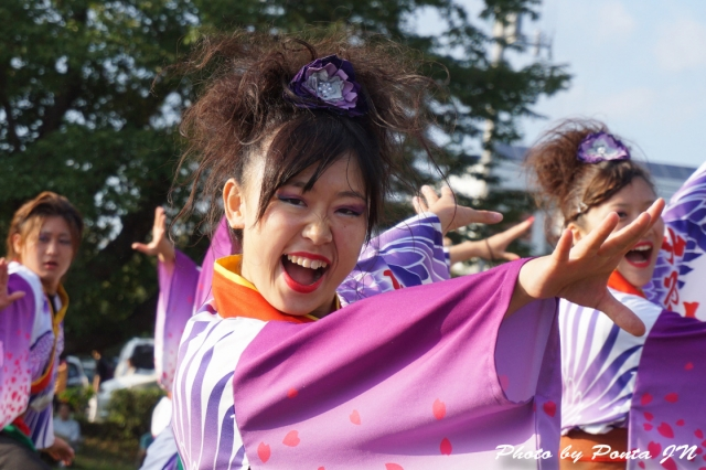 yosakoi14C- (24)