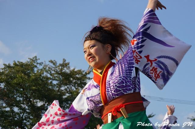 yosakoi14C- (15)