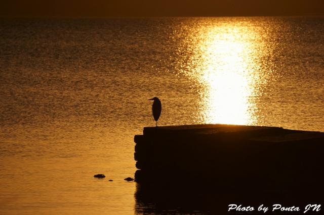 lake141108- (2)