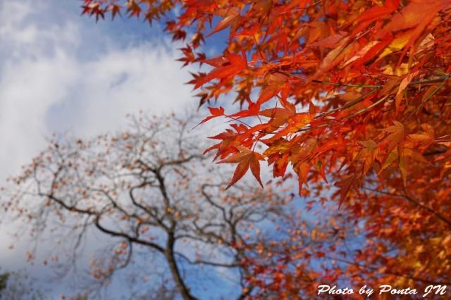 houkouji14-0022.jpg