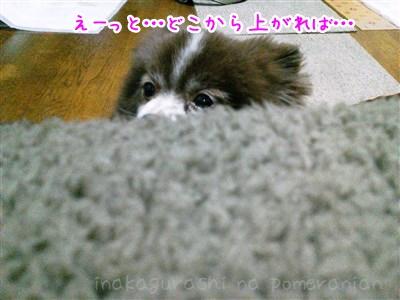130313_01.jpg