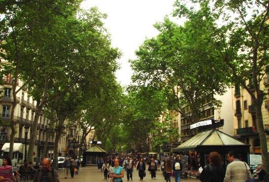 バルセロナ0126