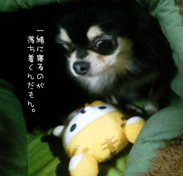 NEC_0005_20121113103919.jpg