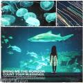 Bring Me The Horizon / Count Your Blessings