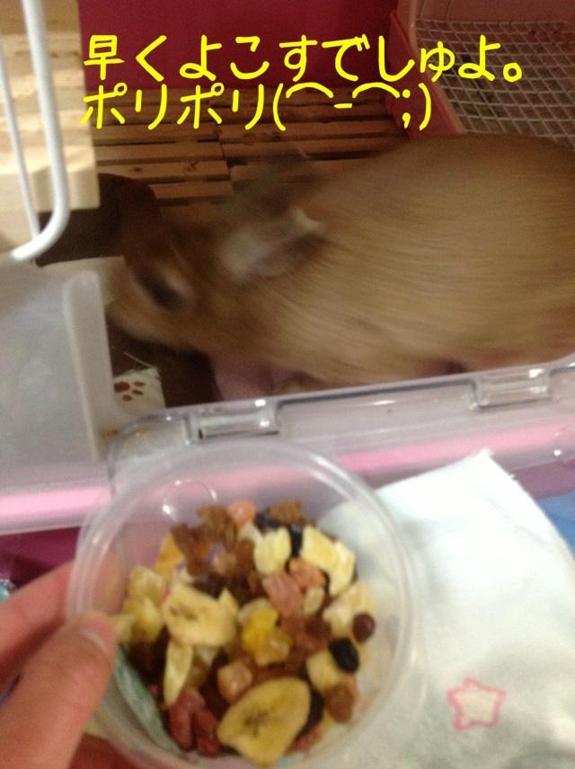 image_20130125074345.jpg