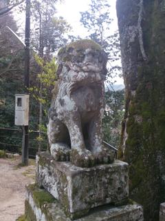 玉作湯神社狛犬(吽)