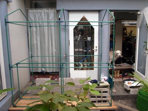 大型温室ビックグリーン ビニールハウス