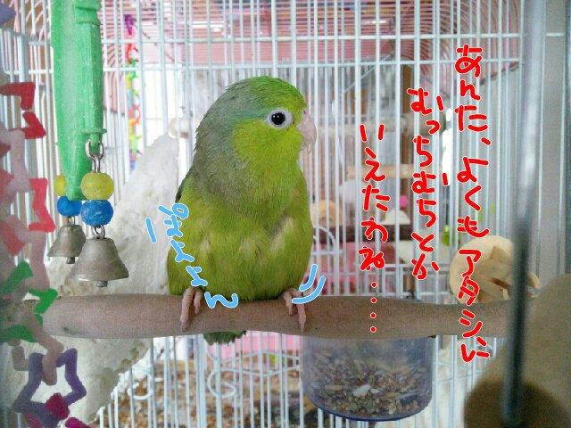 PicsPlay_1390523140071.jpg