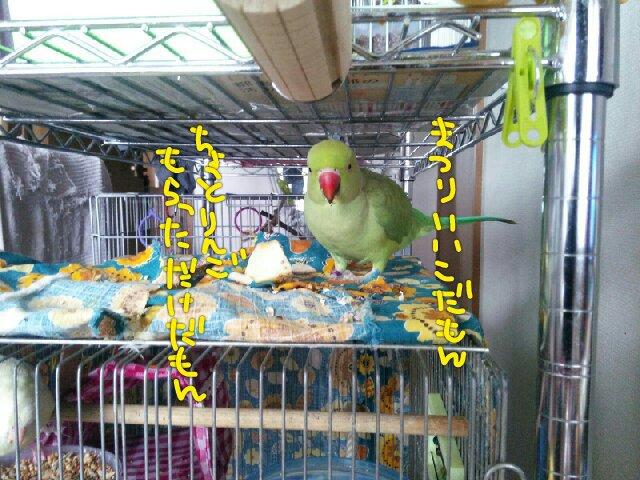 PicsPlay_1390873454614.jpg