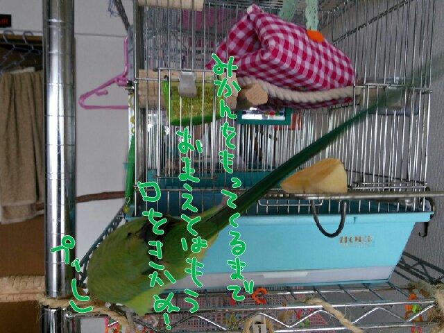 PicsPlay_1392770245771.jpg