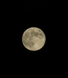 2012-0930_ushimado-tuki02.jpg