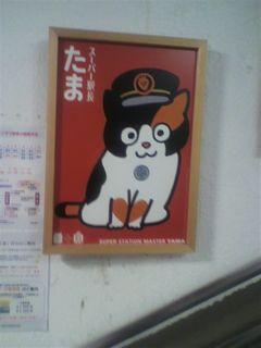 2013-0104_wakayama02.jpg